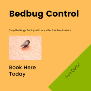 Bedbug Control Scotland